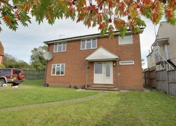 Thumbnail 4 bed detached house to rent in Greenstead Road, Colchester