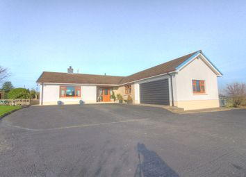 Thumbnail 3 bedroom bungalow for sale in Beulah, Newcastle Emlyn
