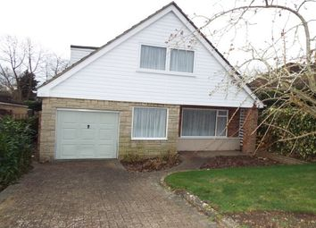 Thumbnail 3 bed bungalow to rent in Orchard Drive, Tonbridge