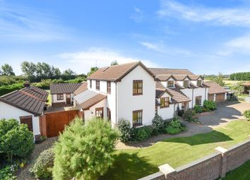 Thumbnail 5 bed detached house for sale in Blunts Drove, Walton Highway, Wisbech