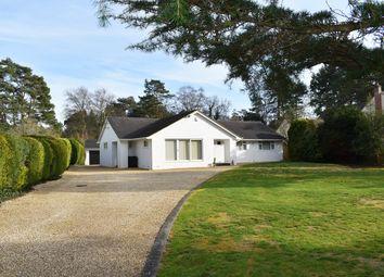 Thumbnail 3 bed bungalow for sale in Avon Avenue, Avon Castle, Ringwood
