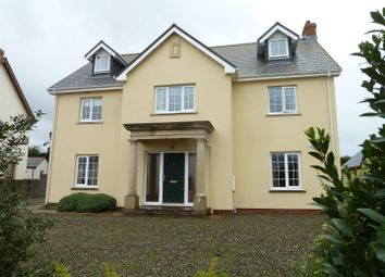 Thumbnail 5 bed detached house for sale in Elidyr Park, Llangwm, Haverfordwest
