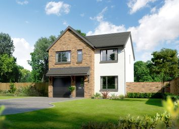 "Thumbnail 4 bed detached house for sale in ""Carlton"" at Ballumbie, Dundee"