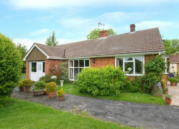 Thumbnail 4 bed equestrian property for sale in Brook End, Cottered, Buntingford, Hertfordshire