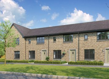 """Thumbnail 3 bedroom terraced house for sale in """"Berwick"""" at Hunter's Meadow, 2 Tipperwhy Road, Auchterarder"""