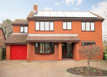 Thumbnail 4 bed detached house to rent in Millers Close, Ashleworth, Gloucester