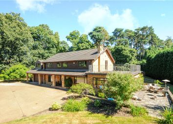 Thumbnail 6 bed detached house for sale in Hancocks Mount, Ascot, Berkshire