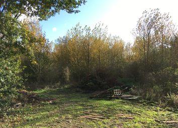 Thumbnail Land for sale in East Tuddenham, Dereham, Norfolk