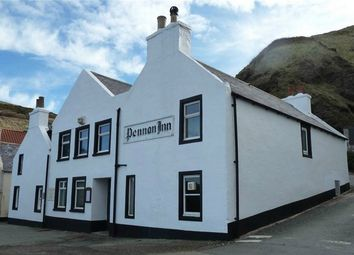 Thumbnail Commercial property for sale in Pennan Inn, Pennan, Fraserburgh, Aberdeenshire