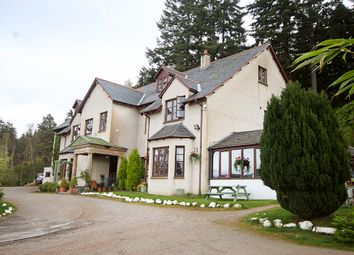 Thumbnail Hotel/guest house for sale in Craigdarroch Inn, Foyers, Loch-Ness