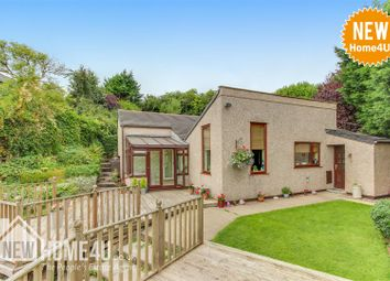 Thumbnail 3 bed detached house for sale in Allt Eisteddfod, Gwynfryn, Wrexham