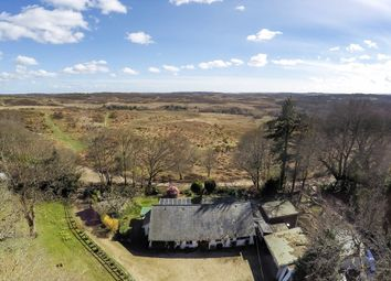 Thumbnail 5 bed property for sale in Picket Hill, New Forest, Ringwood