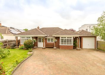 Thumbnail 4 bedroom detached bungalow for sale in Norman Avenue, Abingdon, Oxfordshire