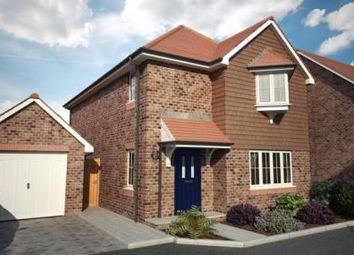 Thumbnail 4 bed detached house for sale in Hunts Pond Road, Titchfield Common, Hampshire