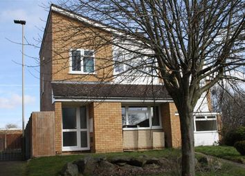 Thumbnail 3 bed detached house for sale in Badgers Close, Leicester