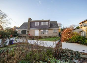 Thumbnail 4 bed detached house to rent in Ryecroft Way, Wooler