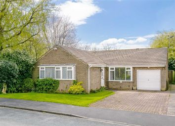 Thumbnail 3 bed detached bungalow for sale in Grantley Drive, Harrogate, North Yorkshire