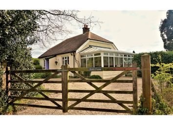 Thumbnail 3 bed detached bungalow for sale in Mayton Lane, Canterbury