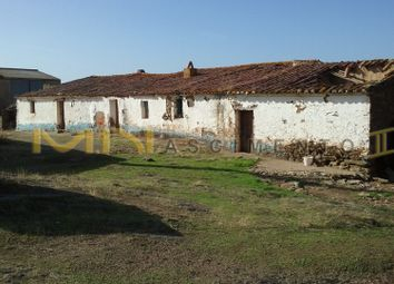 Thumbnail Farm for sale in Close To A Village Santa Clara E Gomes Aires, Portugal