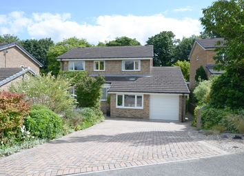 Thumbnail 4 bedroom detached house for sale in Rosamond Avenue, Bradway, Sheffield