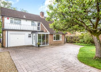 Thumbnail 4 bed detached house for sale in Hook Road, Ampfield, Hampshire