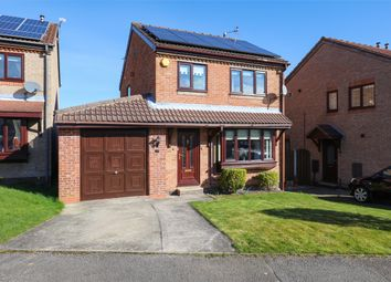 Thumbnail 3 bed detached house for sale in Halfway Drive, Halfway, Sheffield