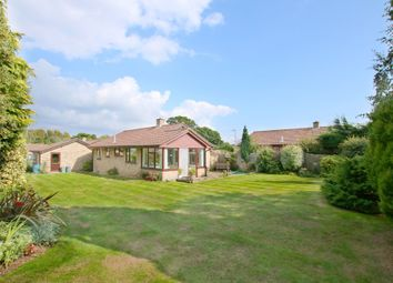 Thumbnail 2 bed detached bungalow for sale in Arden Walk, New Milton, Hampshire