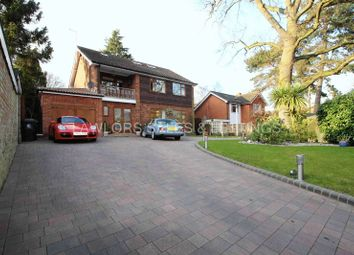 Thumbnail 5 bed detached house to rent in Kendal Avenue, Epping