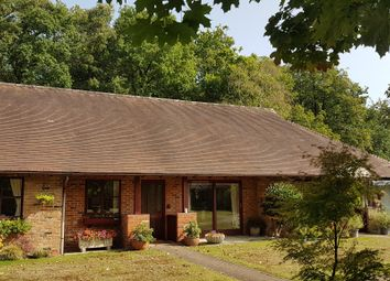 Thumbnail Terraced bungalow for sale in Bagshot Road, Ascot