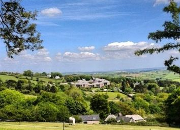 Thumbnail 2 bed cottage for sale in Tower Lane, Moorhaven, Ivybridge
