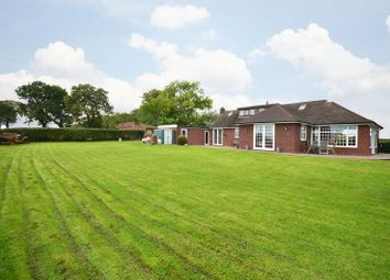 Thumbnail 4 bed detached bungalow for sale in Homelea, Sharpley Heath, Hilderstone, Stone, Staffordshire.