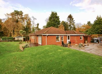 Thumbnail 4 bed bungalow for sale in Rushall Lane, Lytchett Matravers, Poole