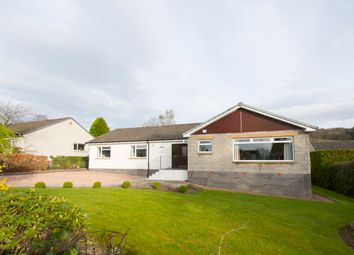 Thumbnail 4 bed bungalow for sale in Kinnoull Hill Place, Perth