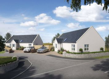 Thumbnail 3 bed cottage for sale in North Quarter, Kingsbarns, Fife