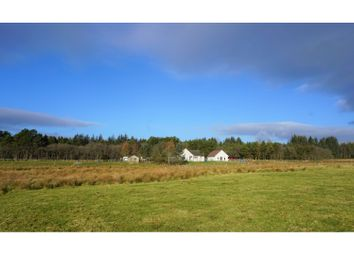Thumbnail 3 bed detached bungalow for sale in House, Fortrose