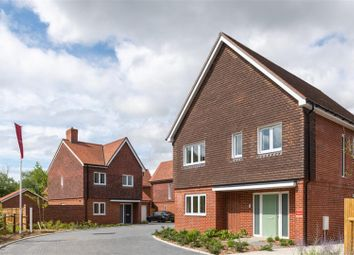 Thumbnail Detached house for sale in Old Hamsey Lakes, South Chailey, Lewes