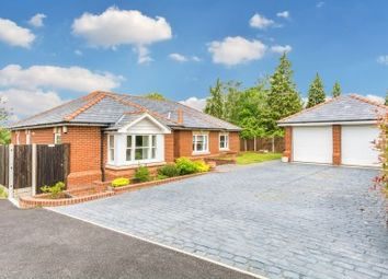 Thumbnail 3 bed bungalow for sale in North Street, Nazeing, Waltham Abbey