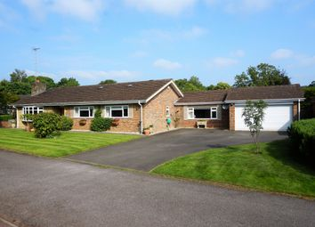 Thumbnail 3 bed detached bungalow for sale in Redwood Grove, Chilworth, Guildford