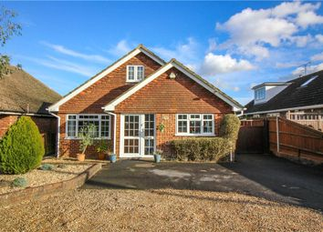 Thumbnail 4 bed detached house for sale in White Lane, Ash Green, Aldershot, Surrey