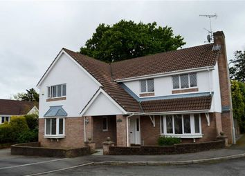 Thumbnail 4 bed detached house for sale in Roger Beck Way, Swansea