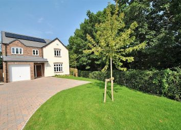 Thumbnail 4 bed detached house for sale in Milkwall, Coleford, Gloucestershire