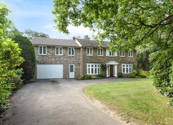 Thumbnail 5 bed detached house to rent in Sunning Avenue, Sunningdale