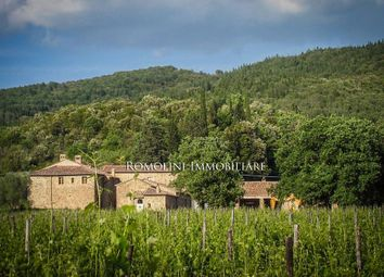 Thumbnail Farm for sale in Montalcino, Tuscany, Italy