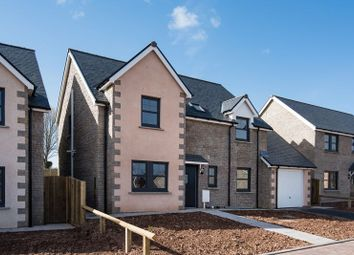 Thumbnail 4 bedroom detached house for sale in Plot 27, Peelwalls Meadows, Eyemouth