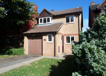 Thumbnail 4 bed property to rent in Redlake Drive, Blackbrook, Taunton