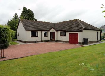 Thumbnail 4 bed detached bungalow for sale in New Abbey Road, Dumfries