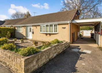 Thumbnail 3 bed bungalow for sale in Milldale Close, Chesterfield, Derbyshire