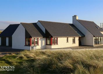 Thumbnail 3 bed detached house for sale in Point Road, Limavady, County Londonderry