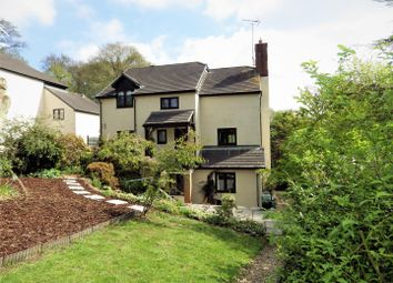 Thumbnail 4 bed detached house for sale in Shute Wood, Hollocombe, Chulmleigh