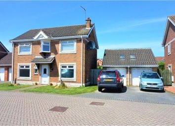 Thumbnail 4 bed detached house for sale in Caledonia Park, Hull